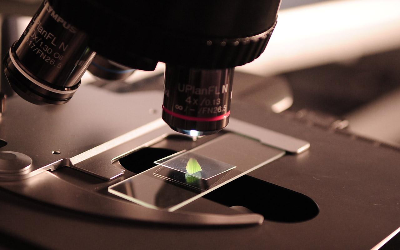 MATERIALES AVANZADOS y nanotecnología